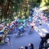 JAPANCUP(ジャパンカップ)サイクルロードレース 2014 観戦記